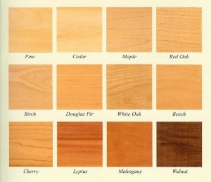 различные породы дерева