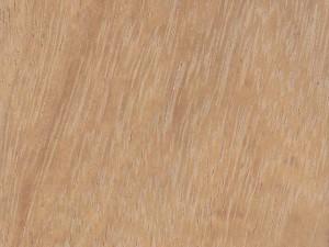 текстура древесины ироко