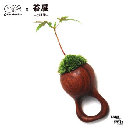 wood-ring-3