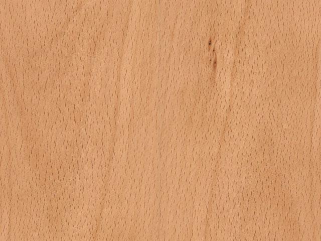 текстура древесины бука