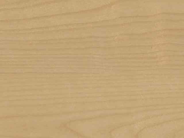 текстура древесины березы