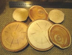 Породы дерева для резьбы